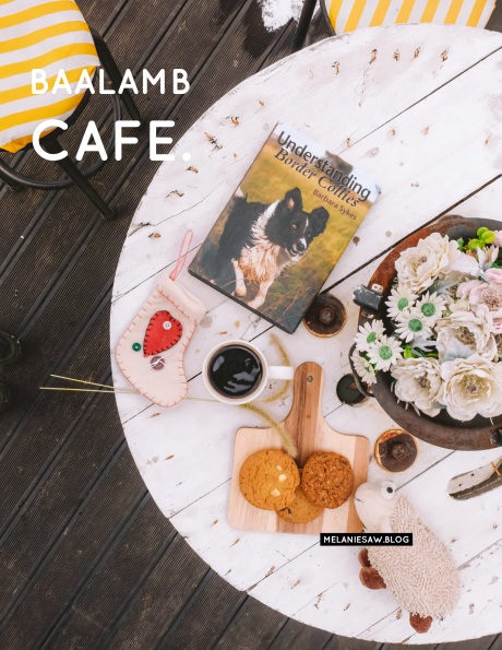 AirasiaXJeju baalambcafe by melaniesaw.blog