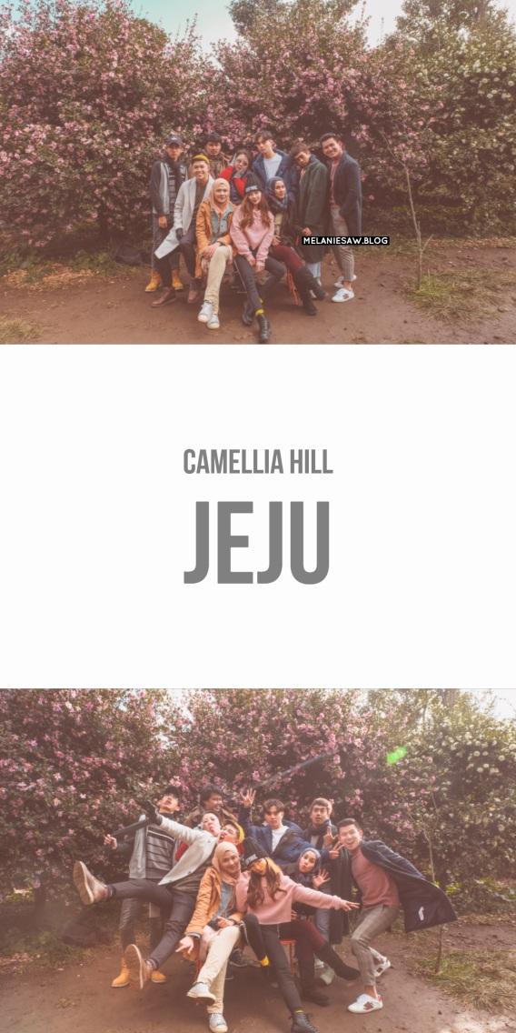AirasiaXJeju camellia hill by melaniesaw.blog